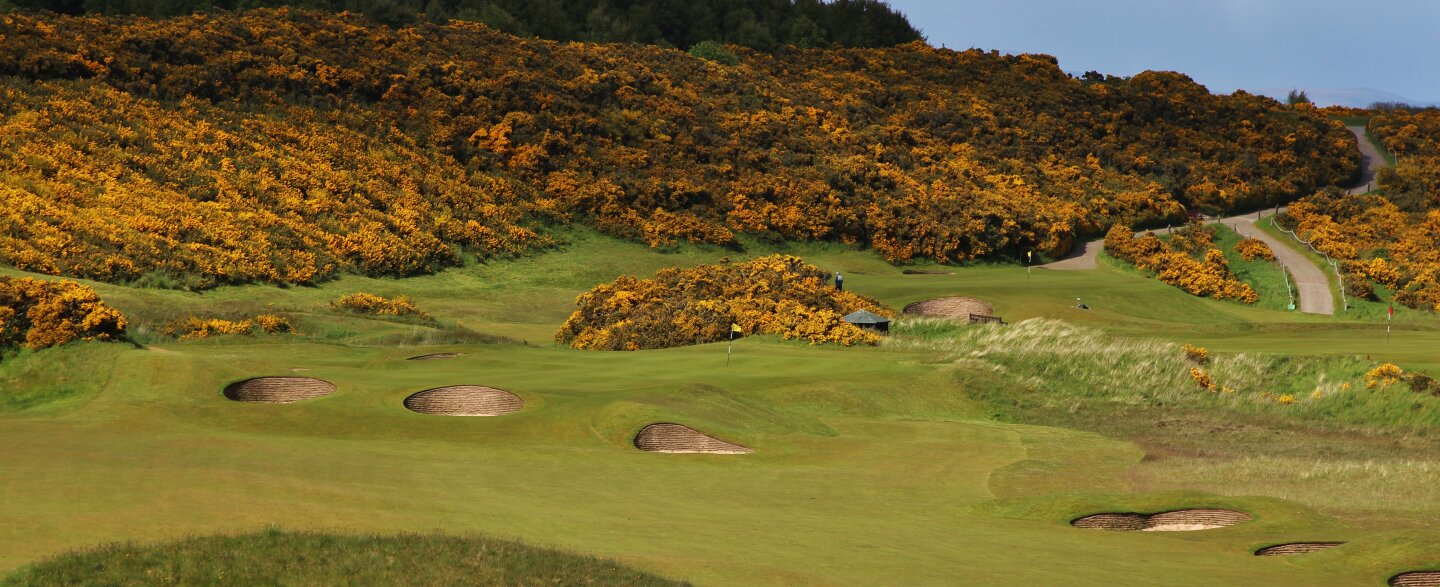 Championship course at Royal Dornoch Golf Club